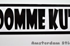 Domme Kut - Tommy Foreveryoung